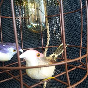 Laat je niet in een hokje stoppen: de woonbeurs in vogelvlucht.